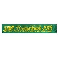 Ленты выпускникам 2018г зеленая, атлас