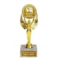 Награда именная для учителя истории и обществознания